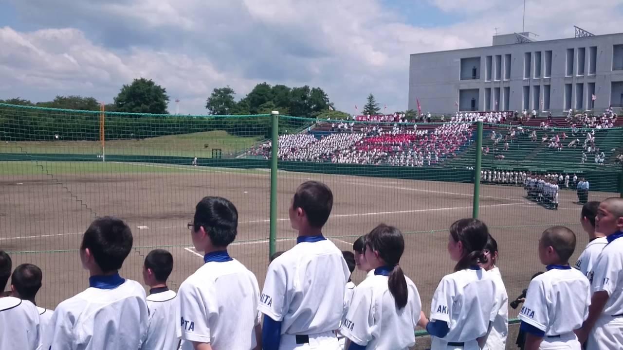 国際 情報 高校 野球 部