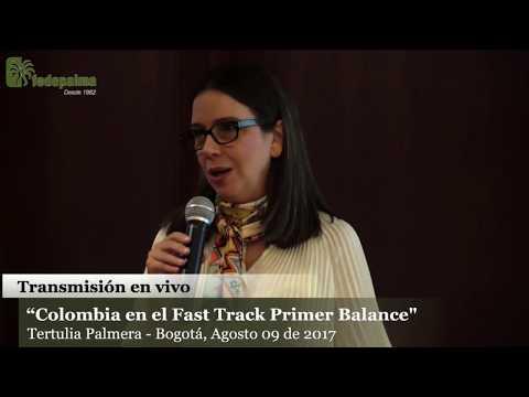 Colombia en el fast track, Primer Balance