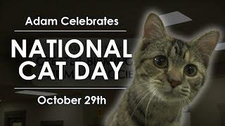 National Cat Day - Adam Celebrates