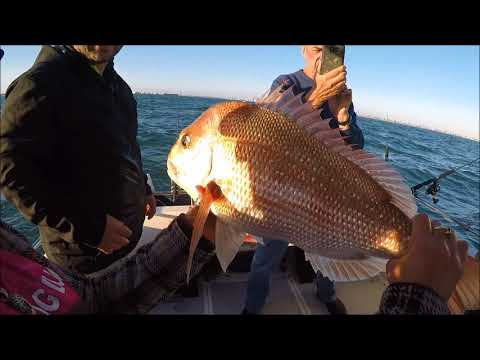 Fishing for Snapper in Port Phillip Bay, Victoria