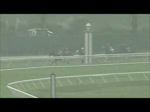 video thumbnail for MONMOUTH PARK 08-28-20 RACE 3