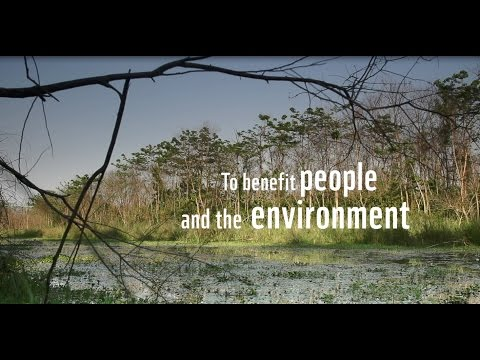 WWF-Finland partnership video