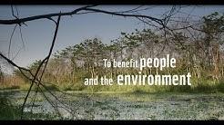 WWF-Finland partnership video
