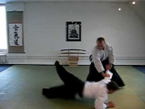 Aikido Fight