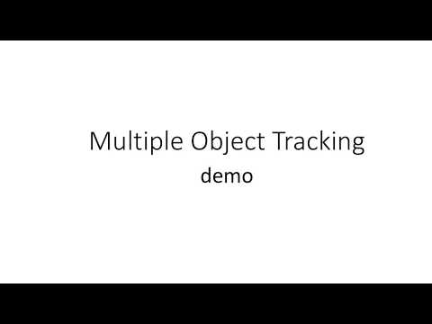 Multiple Object Tracking demo