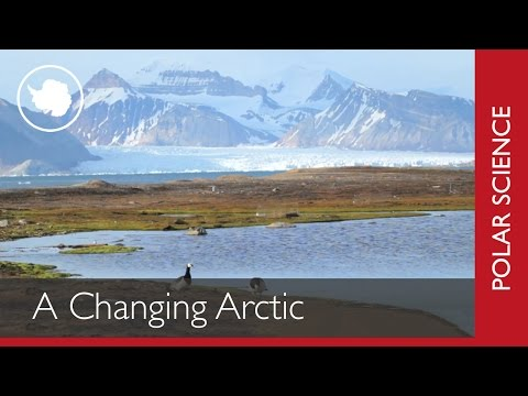 A Changing Arctic