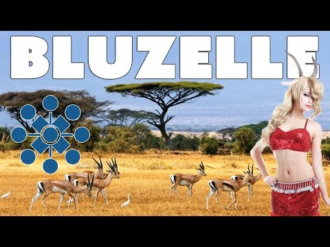 Bluzelle (BLZ) Review - Better than Siacoin Filecoin and Storj?