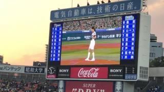 4.13ハマスタ横浜DeNAベイスターズvs阪神タイガース.