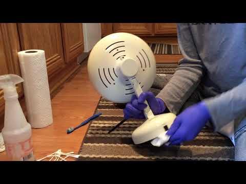ASMR Brushing Wiping Scrubbing Cleaning Spraying Mirror No Talking No Tapping