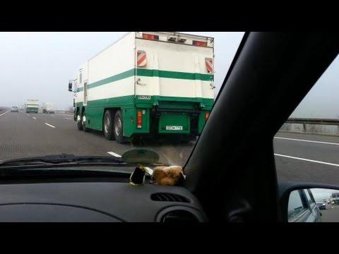 3x Werttransport Deutsche Bundesbank + 3x Begleitfahrzeuge Polizei Berlin