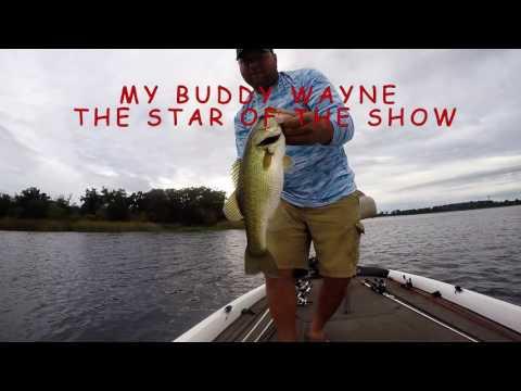 Lake Bastrop Report 8/21/16