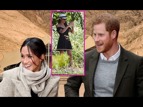 THE TOWN: Prince Harry goes wild.. for a honeymoon in Namibia a-night with Meghan Markle