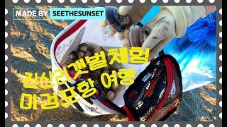 진산리 갯벌체험 / 마검포항 여행