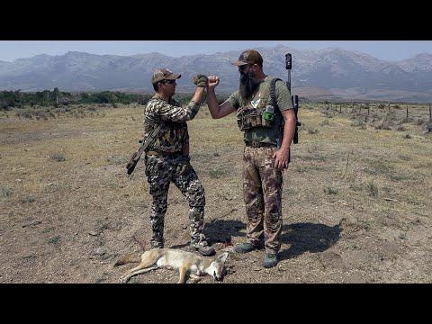 Coyote Hunting is Fun!