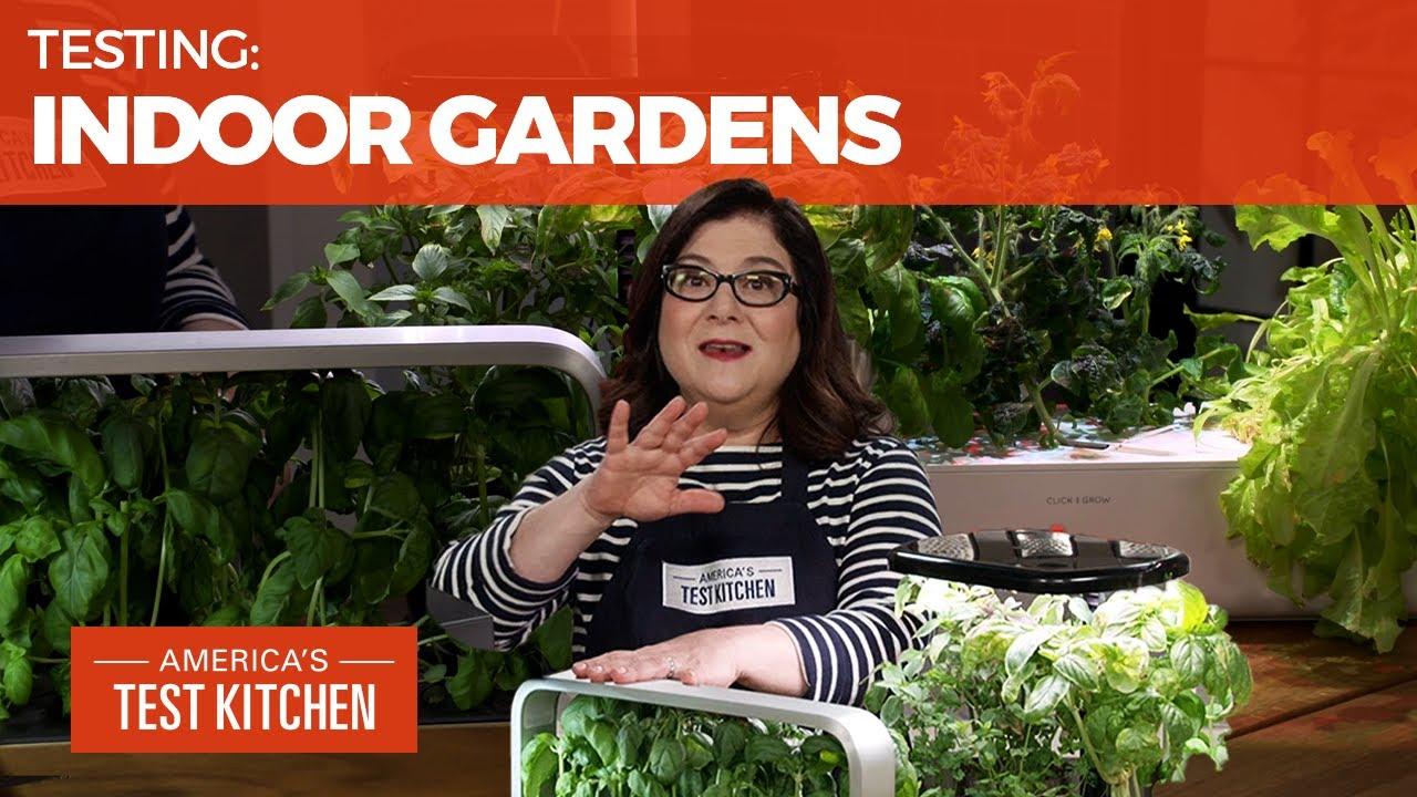 Kitchen Gadget Expert's Top Pick for Indoor Gardens
