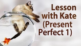 Lesson with Kate (Present Perfect 1)