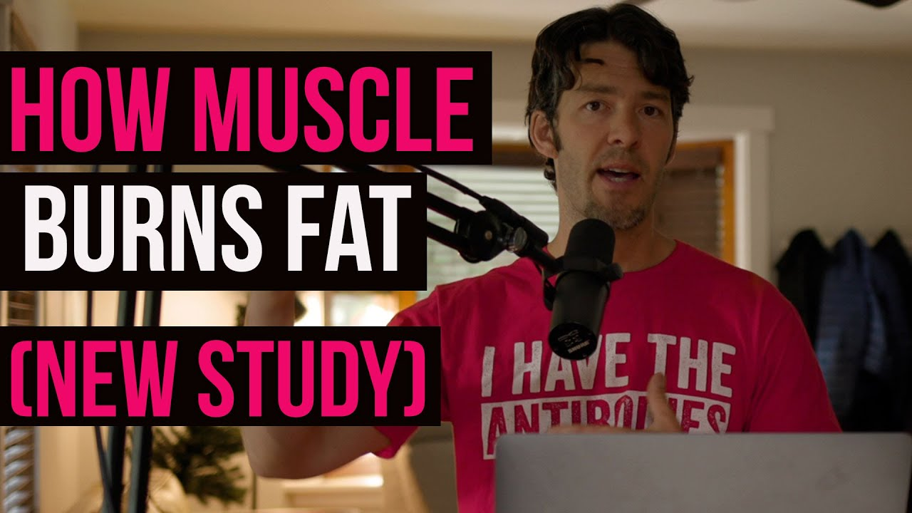 Muscle Burns Fat, Marbled 'Meat' in Humans Linked to Insulin Resistance