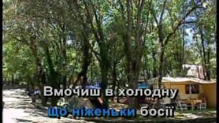 НІЧ ЯКА МІСЯЧНА, ЗОРЯНА, ЯСНАЯ — караоке Українська народна пісня Ukrainian folk song karaoke