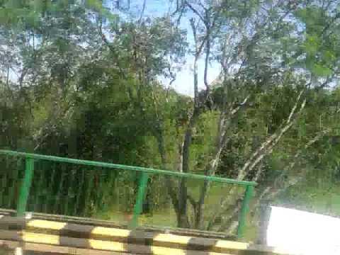 Ponte do Brasil até a Argentina Duty Free