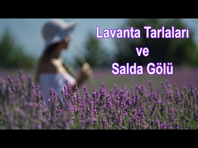 Lavanta Tarlaları ve Salda Gölü / Lavender Fields and Lake Salda