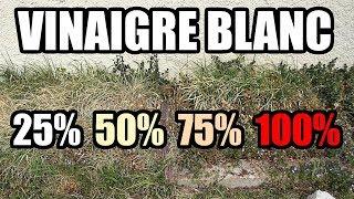 désherber au vinaigre blanc LIDL - Test à 25% 50% 75% 100% désherbant bio?