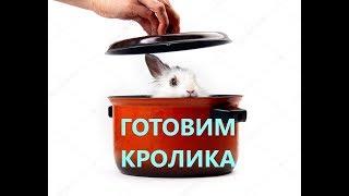 Как приготовить кролика | Тушеный кролик в сметане