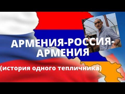 Из Армении в Россию. Тепличный бизнес по армянски