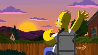 The Simpsons : Paralytic spider homer