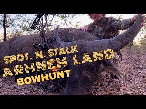 ARHNEM LAND BUFFALO BOWHUNT AUSTRALIA