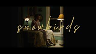 snowbirds - short film