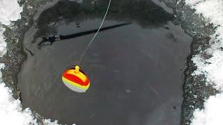 МЫ РАДИ ЭТО рыбалки ПРОШЛИ 7 км рыбалка зимой в палатке Алтай уп 2