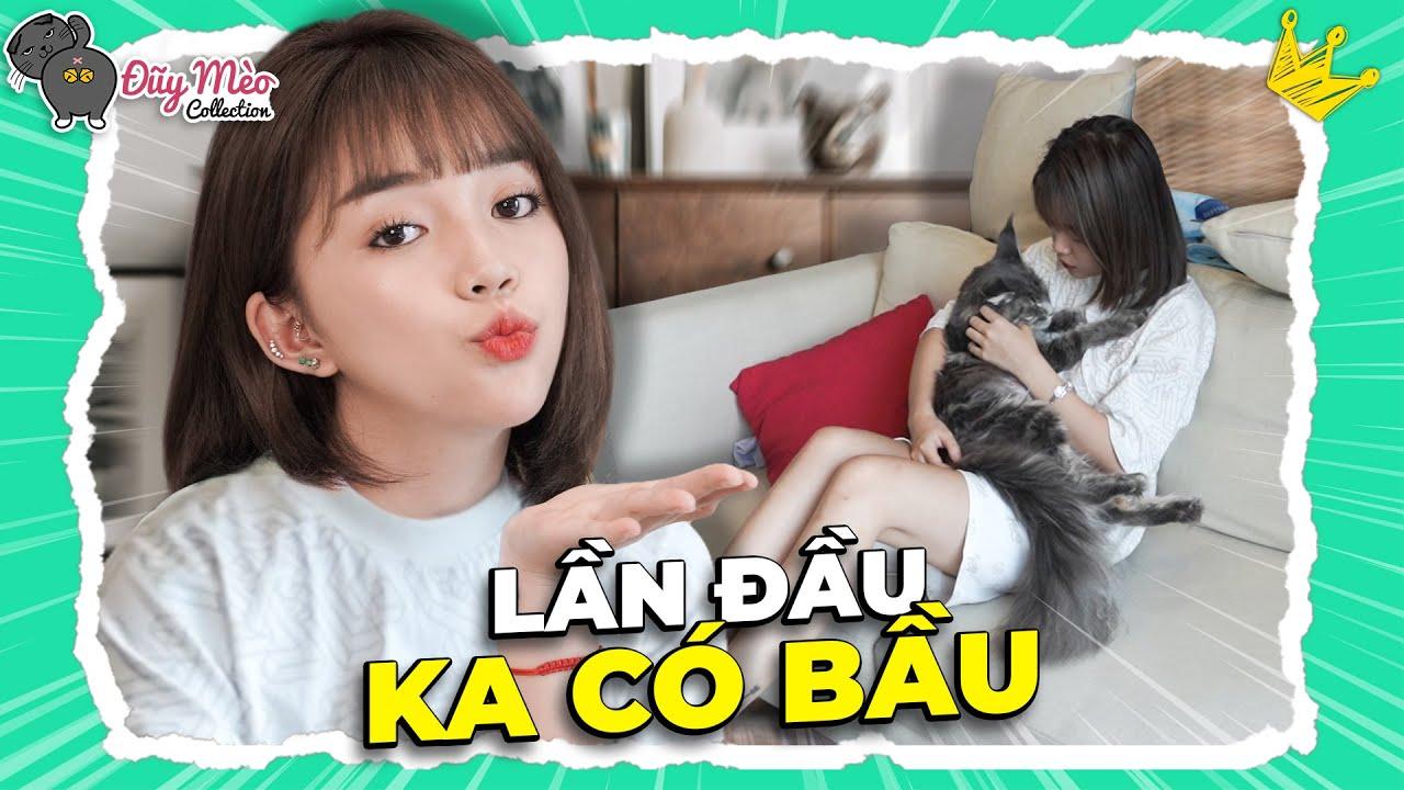 Một Ngày Siêu Vui Của Linh Chào Đón 8 Bé Mèo Con Ra Đời | ĐŨY MÈO COLLECTION