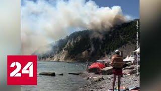 В Краснодарском крае лесной пожар начался под Туапсе - Россия 24