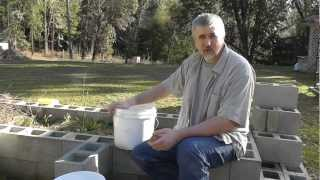 Growing Potatoes in 5 Gallon Buckets