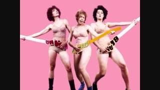 Chicks On Speed - Wordy Rappinghood