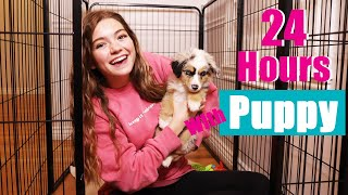 24 Hours With My New Puppy!