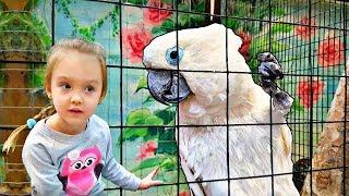 Niños y animales salvajes en el zoológico: tipos de animales - Mi Mi Kids