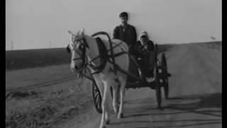 Yaşamak Haram Oldu - Türk Filmi