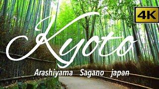 京都に行きたくなる嵐山✨ 岚山 Arashiyama kyoto japan🌴渡月橋 法輪寺を4K空撮 Mavic2Pro早朝の嵐山は最高です!京都旅行 京都観光GoPro HERO7で撮影