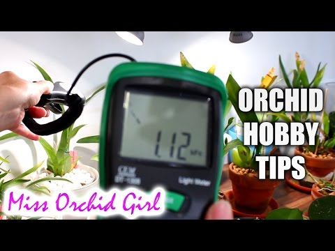Random tips for the Orchid hobby