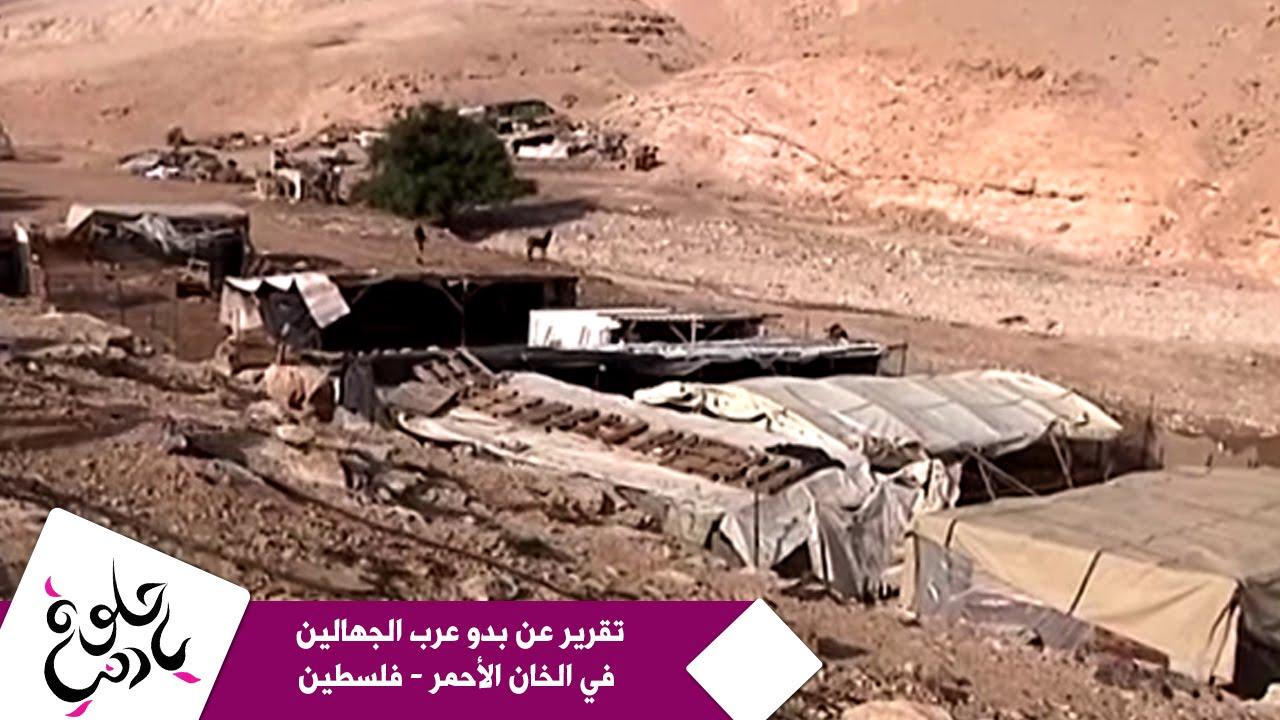 حلوة يا دنيا - تقرير عن بدو عرب الجهالين في الخان الأحمر - فلسطين