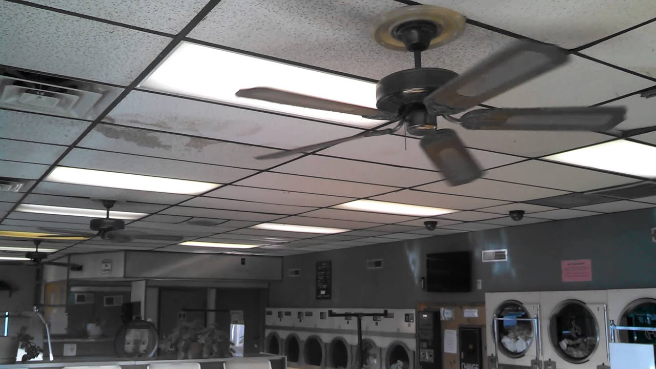 Kmart CEC Ceiling Fans in a laundromat (short video ...