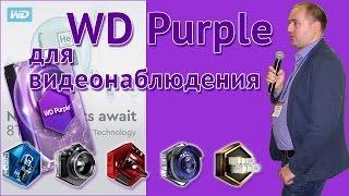 Western Digital Purple для видеонаблюдения
