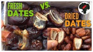 Fresh Dates vs Dried Dates thumbnail