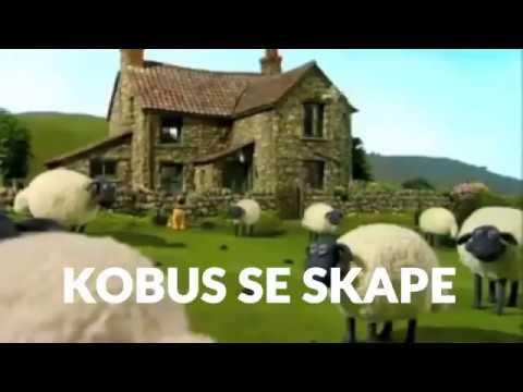 KAAS BRA SKAPE MIX. Jan Bloukaas