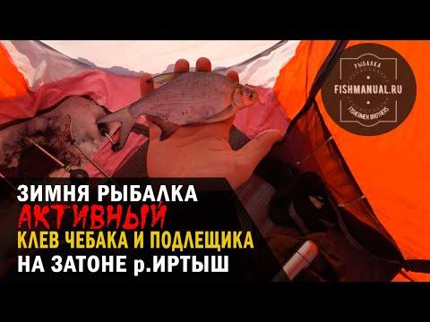 Активный клев чебака и подлещика на Иртыше, или зимняя рыбалка на затоне