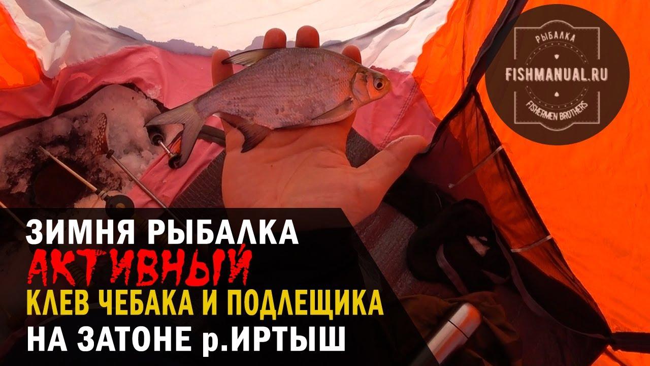 "Активный клев чебака и подлещика на Иртыше, или зимняя рыбалка на затоне ""Лампочка""."