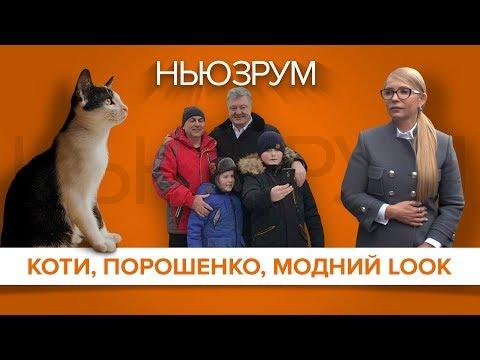 Коти-кандидати, селфі Порошенка,