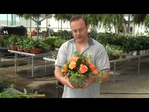How To Arrange A Dozen Roses In A Bubble Bowl