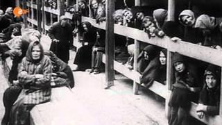Pogromnacht 9. November 1938 (ZDF History)